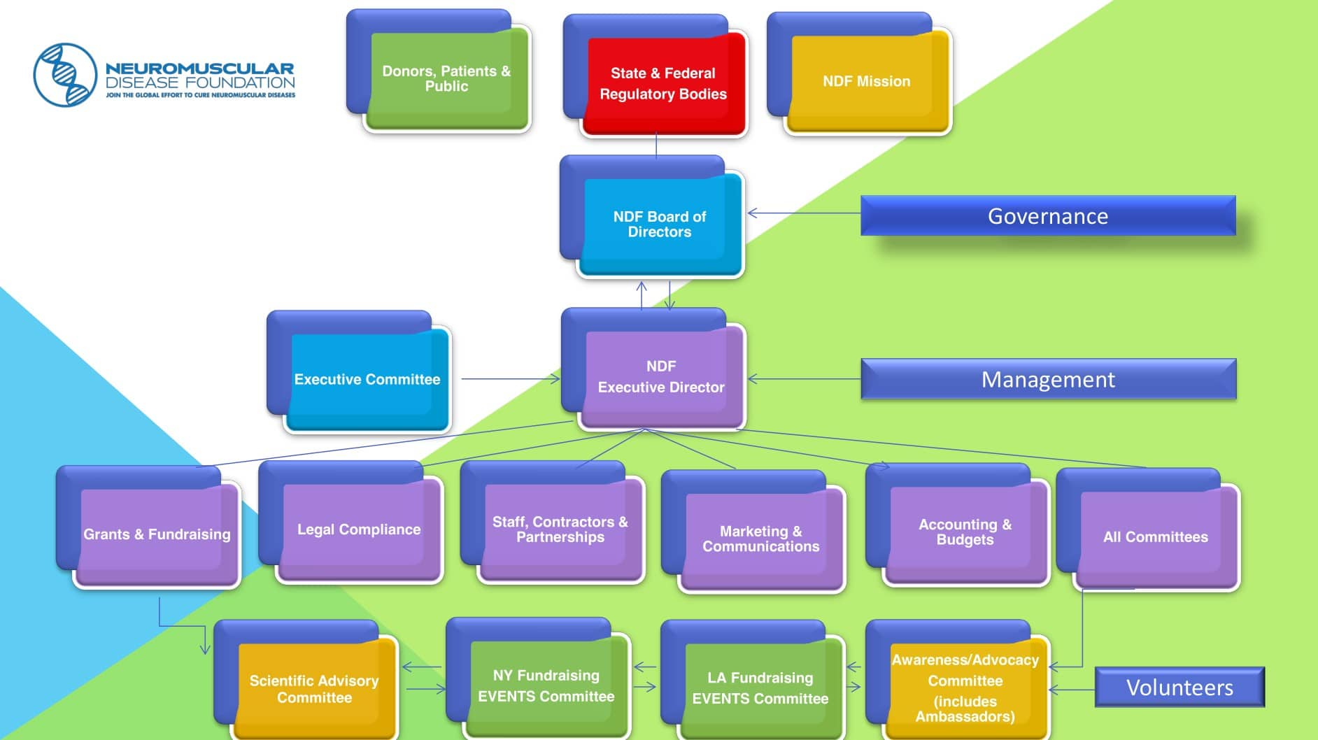 Chart explaining the organizational structure of NDF